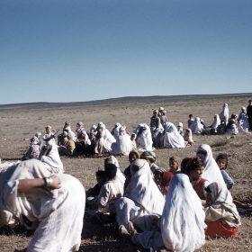 el aricha- juin 62- arrivéed de réfugiés du maroc